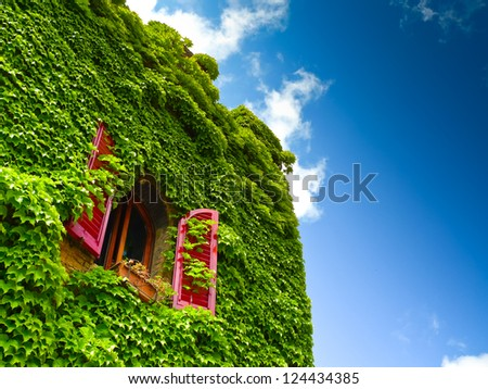 Antique brick facade covered in ivy with a rounded window with open red shutters