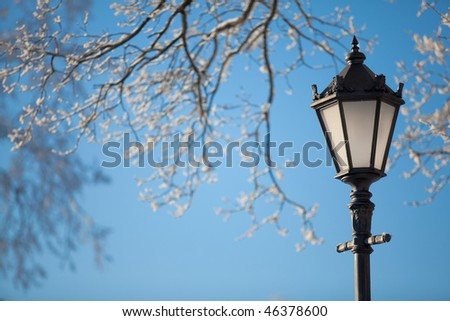Antique frosty lamppost and beautiful snow covered branches against the azure sky