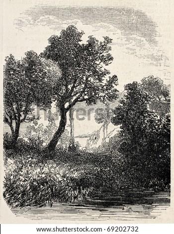 Antique illustration of natural landscape. Original, from a tablet of Gresy, was published on L'Illustration, Journal Universel, Paris, 1860