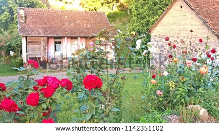 Antique pink house framed by red flowers! South of Brazil  #1142351102