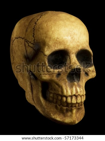 Antiqued-looking model of skull on black background with clipping path.
