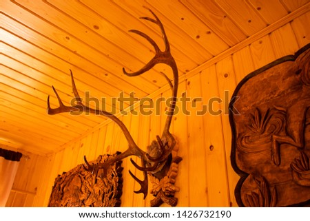 Antlers and moose antlers on a wall #1426732190