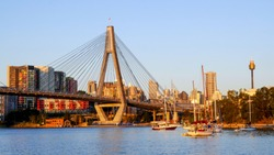Anzac bridge over Blackwattle Bay in the evening, view form the Blackwattle Bay public park with AMP Tower in the background
