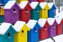 Apartment building for birds. Beautiful multi-colored birdhouses. Winter.