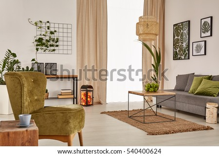 Apartment with grey sofa, green armchair and wood table #540400624
