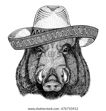 Aper, boar, hog, hog, wild boar Wild animal wearing sombrero Mexico Fiesta Mexican party illustration Wild west