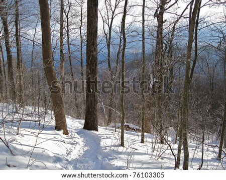 Appalachian Trail in Winter