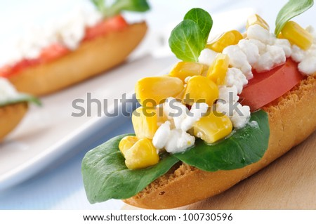 Appetizer, croutons with cottage cheese, tomato, corn and lettuce, closeup