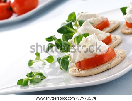 Appetizer with tarts of tomato and cheese, finger food