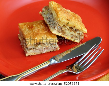 appetizing homemade baked meat pie on red plate