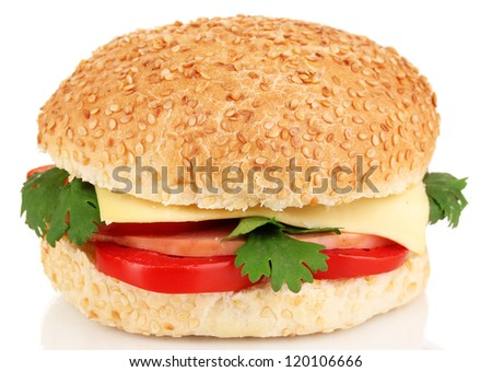 Appetizing sandwich isolated on white