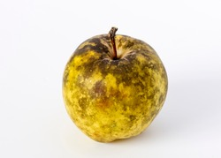 Apple affected by Sooty Blotch fungus