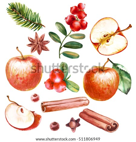 Stock Photo Apple and cranberries.  Watercolor Christmas set of fruits, spices and festive decor.  Design elements for invitations, announcements and greeting cards.
