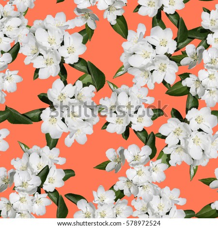 Apple blossom branch of flowers cherry on bright color backdrop. Traditional ornate spring flowers sakura pattern seamless. White flower buds on a tree. Sacura collage artistic illustration. #578972524