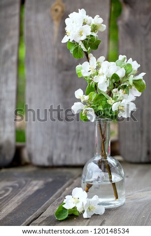 apple blossoms in vase on wooden bench