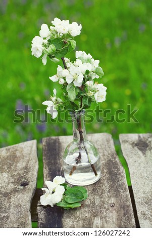 apple blossoms on rustic wooden garden table