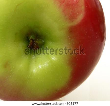 Apple close up