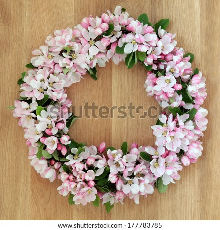 Apple flower blossom wreath over golden oak background.