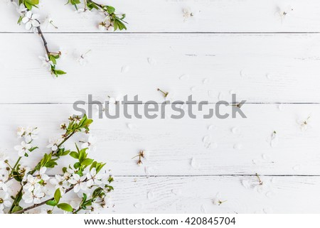Apple flowers on white wooden background. Frame of flowers. Flat lay, top view