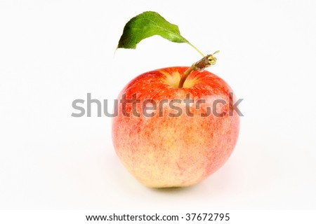 apple on isolated white background