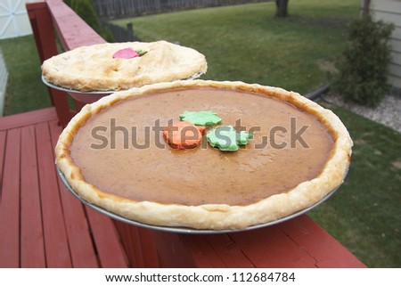 Apple Pie and Pumpkin Pie