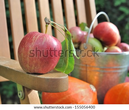 apple placed on the arm of a garden chair