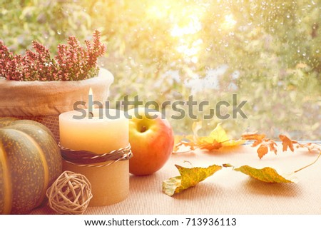 Apple, pumpkin, heather and Autumn leaves on a window board on a rainy day. Toned image, space for your text