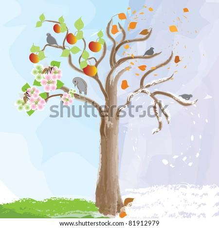 apple tree as symbol of  seasonal changes