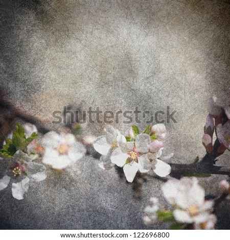 apple tree flowers grunge illustration background with original texture