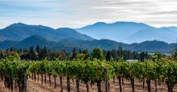 Applegate Valley winery near Ashland, Oregon