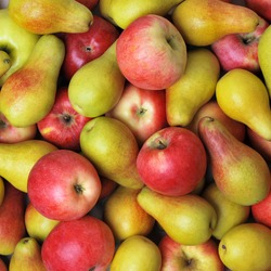 Apples and pears