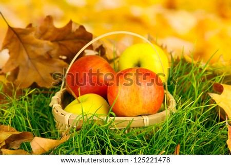 Apples in wicker basket on grass on bright background