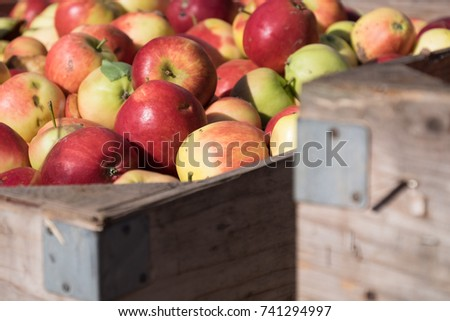Apples packed into wooden crate #741294997