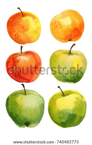 Apples painted with watercolors on white paper. Red apple, green apple, leaf, half an apple.