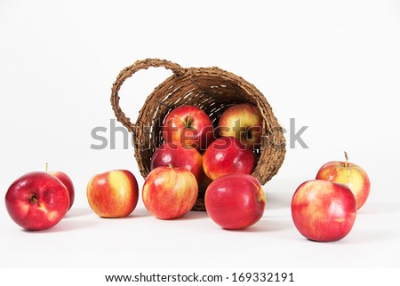 Apples spilled from the bucket photographed on a white background.
