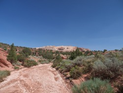 Approaching famous Buckskin Gulch canyon, hiking by the dry riverbed and red rocky Arizona desert landscape