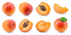 Apricot isolated. Apricots on white. Whole, half, slice apricots with leaf. Apricot set. Full depth of field.