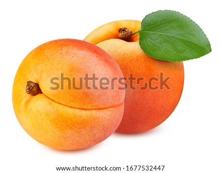 Apricot leaves isolated on white background. Apricot fruit clipping path. Fresh organic apricot. Сток-фото ©