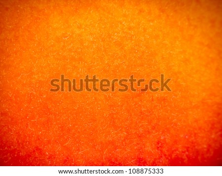 Apricot macro for texture or background - stock photo