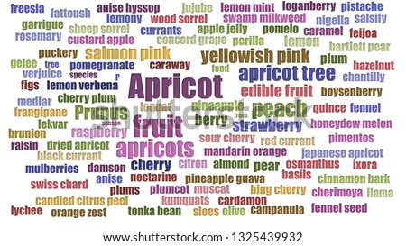 Apricot Tag Cloud Aligned Isolated