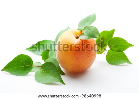 apricot with leaves on white. isolated