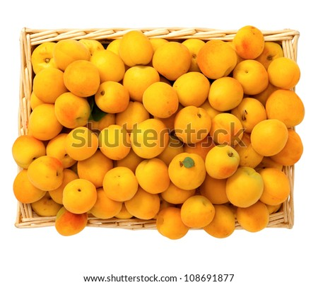 Apricots in the basket