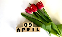 April 9.April 9 on wooden cubes.Next to it is a bouquet of red tulips on a white background.Calendar for April.Spring