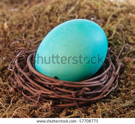 Aqua Easter Egg in grapevine nest on mossy background