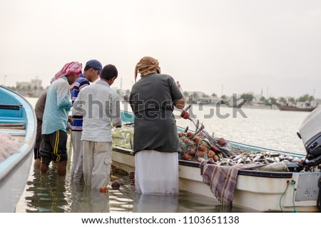 Arab fishermen collecting fish from his nets after fishing day. Oman #1103651138