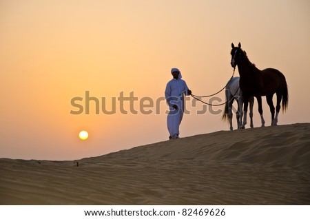 Arab Man with Arabian Horses in the desert during sunset