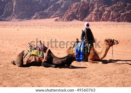 Arab man with camels in desert