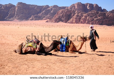 Arab man with camels on desert in middle east