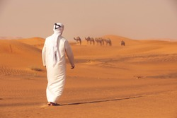 Arab shepherd of the camels standing in the desert and looking to his herd of camels. Arabian farmer concept.