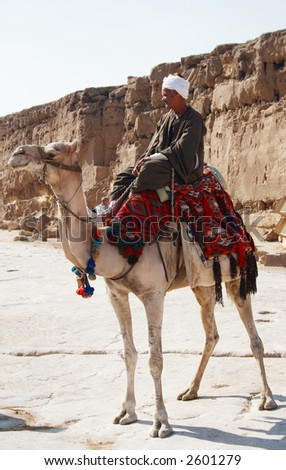 Arabian Bedouin riding a camel near Great Pyramids in Giza, Cairo, Egypt - editorial